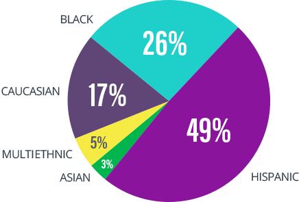 demographic pie chart
